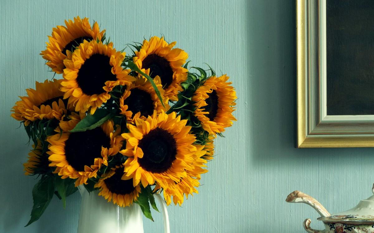 simon wiesenthal sunflower essay