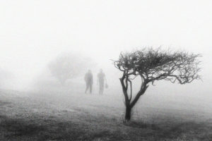 a black and white image of an open field except for a short tree with a tuft of leaves at the top in the front right corner of the image, and a hazy shape of a tree in the far background in the left quadrant. two figures walk away from the camera in a thick fog, you can only see their shapes.
