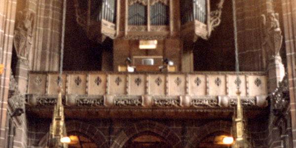 image of an individual in a church looking upwards and maybe taking a photo; her back is to the camera.