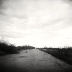 image of a wide open road in a flat deserted area with dark bushes low to the ground flanking either side of the path, under a wide open sky.